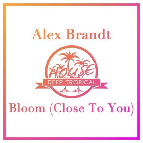 alex_brandt_bloom