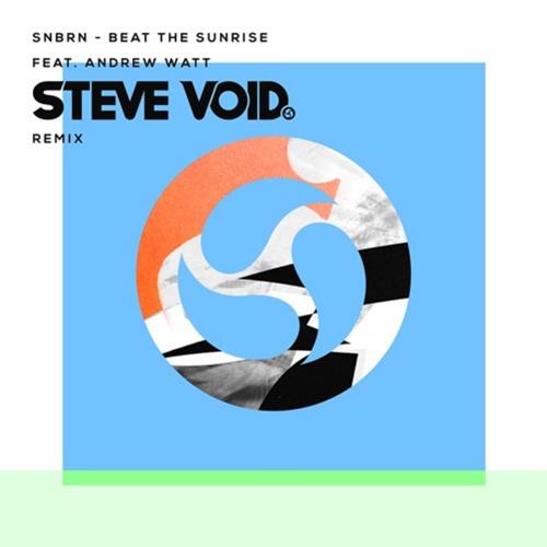 snbrn_steve_void