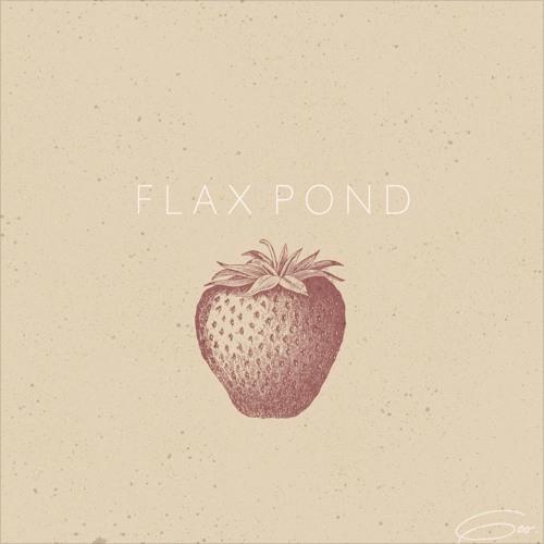 geo_flax_pond