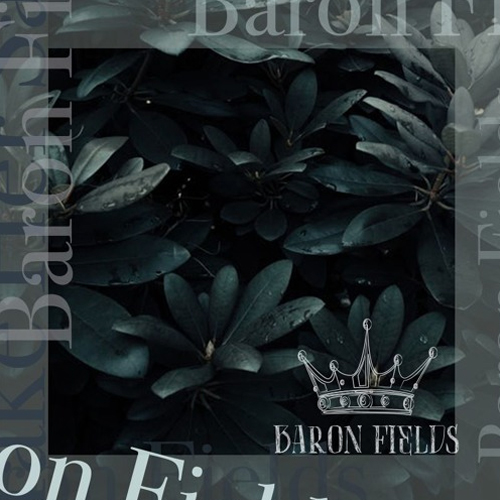baron_fields_make_her_say
