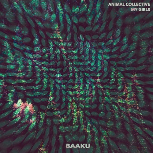 animal_collective_baaku